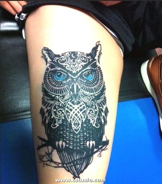 Tatuajes De Buhos Para Mujer Pierna 500x566