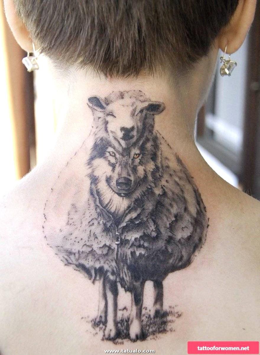 Wolf Schaf Frauen 800x1093